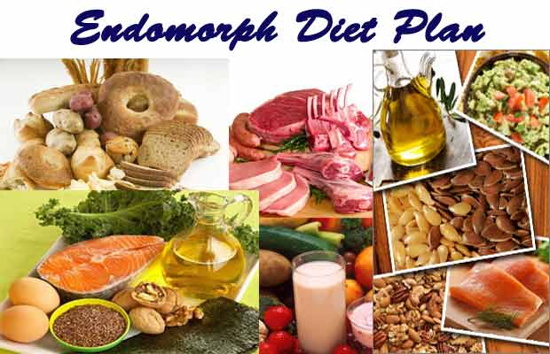 endomorph diet paln