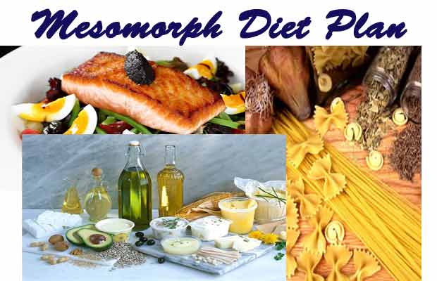mesomorph diet plan