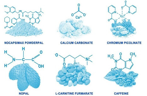 PhenQ-Ingredients