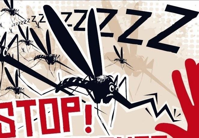 How To Stop Zika Virus