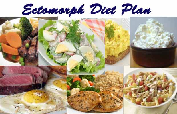 ectomorph diet plan