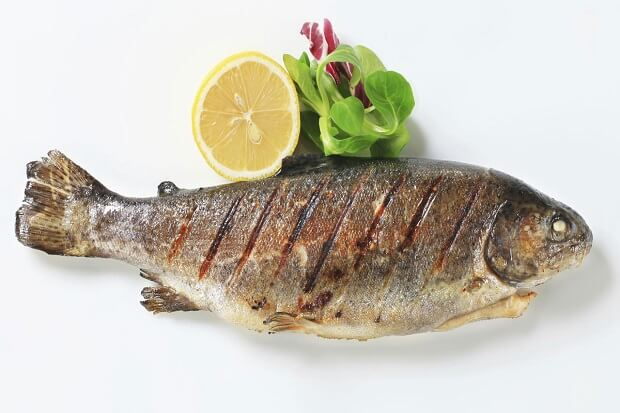 fish for low fat