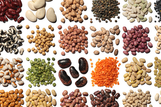 legumes for low fat