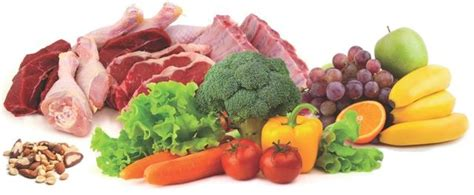 low-carb-fruits,-veggies,-and-meat for weight loss