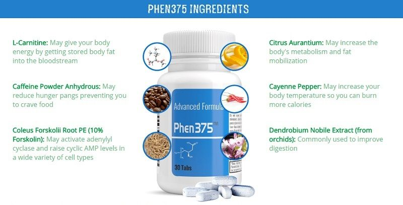 phen375 ingredients img