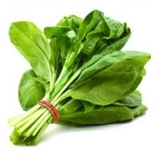green leaves veg - spinach